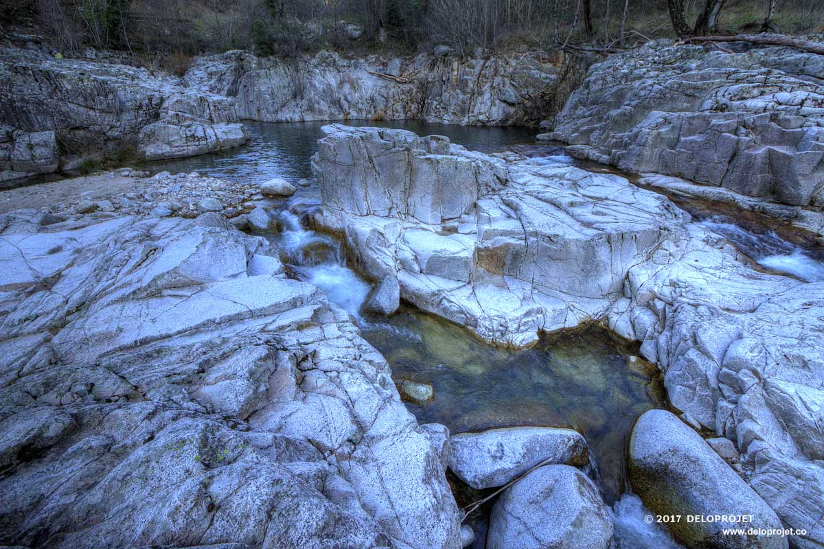 Walk with the dog in the canyon in national park Cevennes