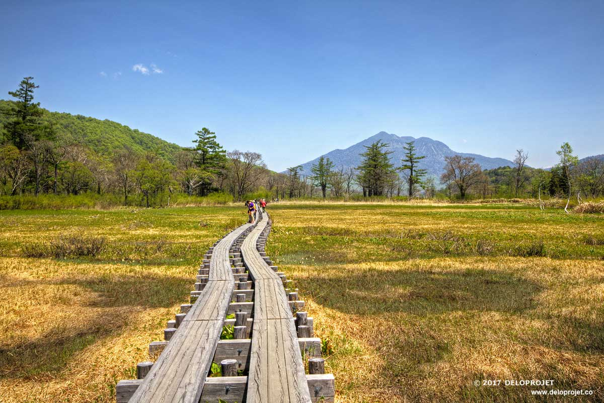 Comeback to Oze National Park japan before going to France